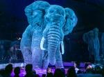 World Elephant day 2020 : ఏనుగుల సంరక్షణ మనందరి బాధ్యత...