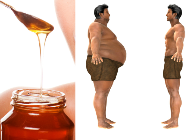 honey to reduce fat