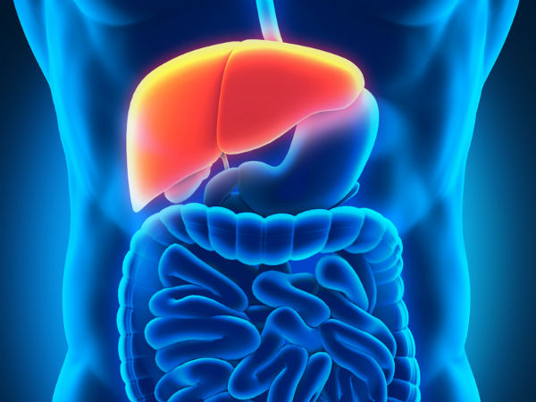 World Liver Day 2018: 10 Everyday Habits That Damage The Liver