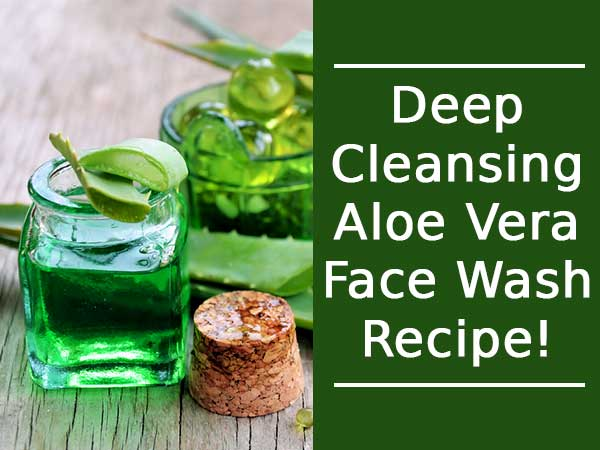 Deep Cleansing Aloe Vera Face Wash Recipe!
