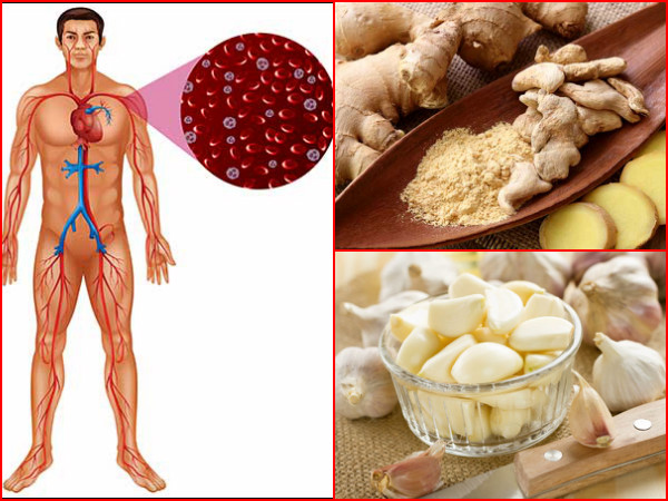 These Common Foods Can Improve Blood Circulation In A Month!