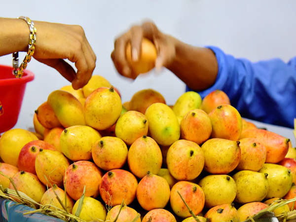 Best Tips On Selecting A Ripe Mango