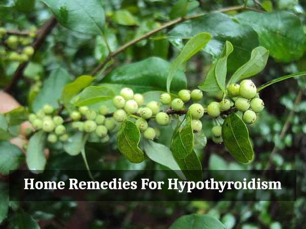 home remedies for hypothyroidism