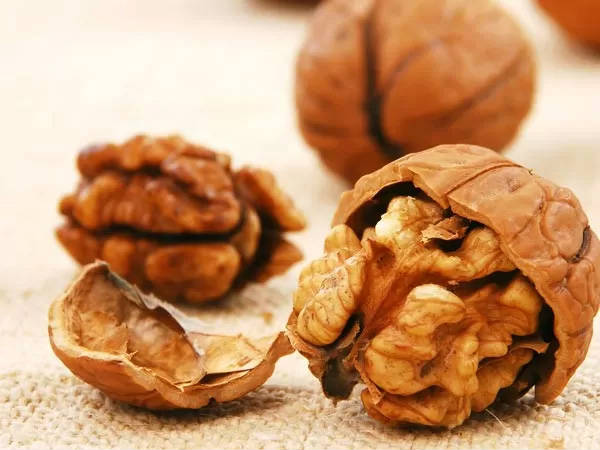 Including A Handful Of Walnuts In Your Diet Has These Benefits