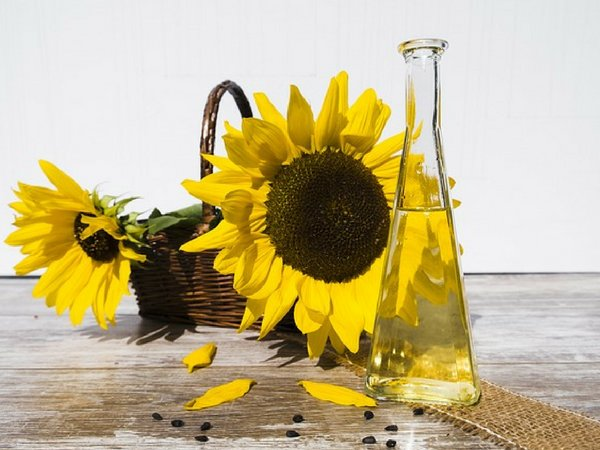 Top 11 Healthiest Cooking Oils That Will Keep You Healthy