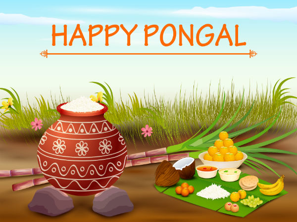 pongal on sankranti