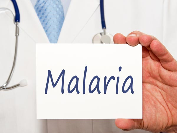 World Malaria Day: Indian Diet For Malaria