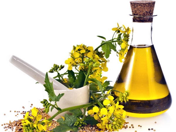Beauty Benefits Of Mustard Oil You Didnt Know