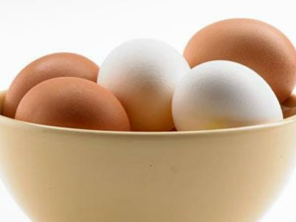 How Does Salmonella Bacteria Get Into Eggs