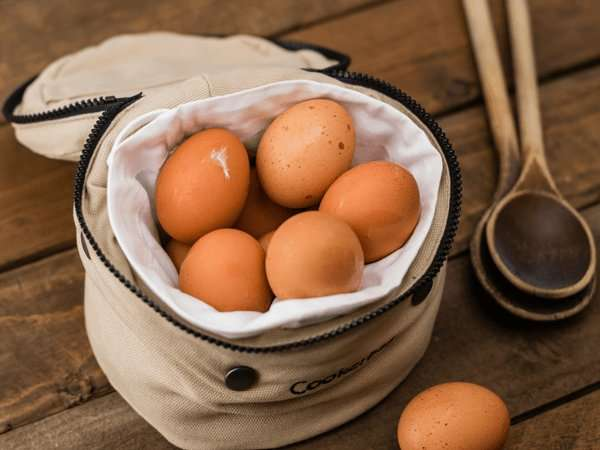 10 Amazing Facts You Didnt Know About Eggs