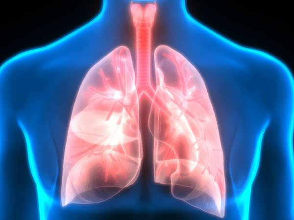 10 Home Remedies To Purify Your Lungs
