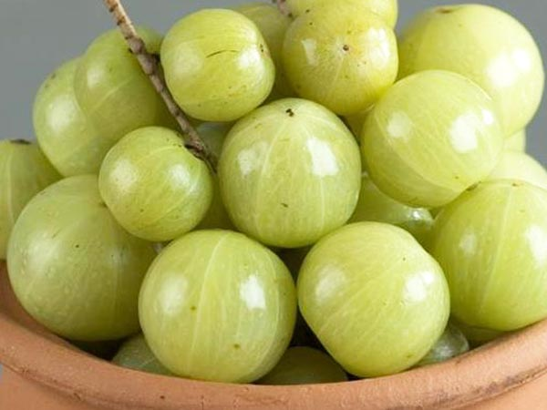 9 Side Effects Of Amla Which You Arent Aware Of
