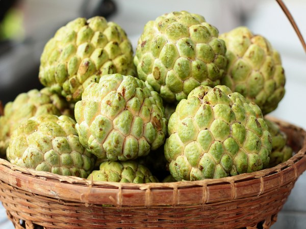 Sitaphal Myths And Facts: Heres Why You Must Have Custard Apple This Season