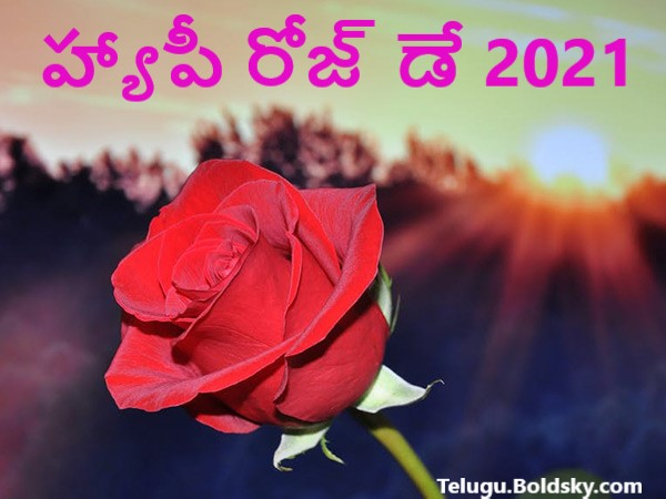 Happy Rose Day 2021: Wishes, quotes, messages, images, whatsapp status message in Telugu