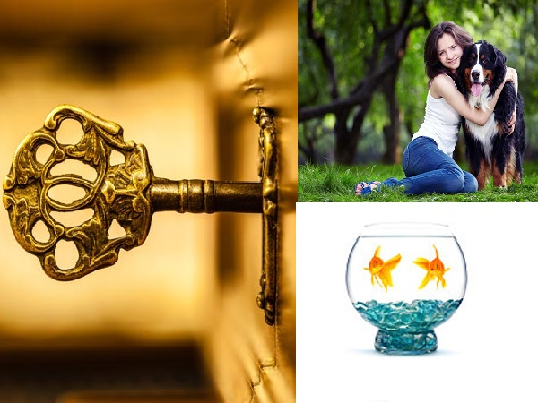 Important Vastu Tips for Keeping Pets at Home in Telugu