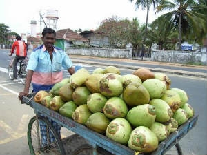 Tender Coconut Benefits Heart Aid