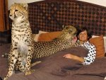 Animals That Can Kill Evil Eye 151111 Aid