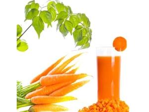 Carrot Oil Make Hair Grow Faster Longer Aid