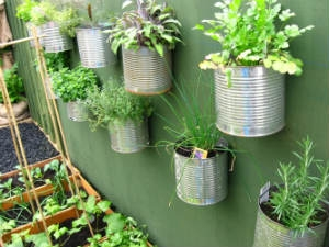 How Choose Containers Kitchen Garden Aid