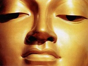 Searching Buddha
