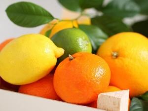 Fruit Face Packs Treat Oily Skin