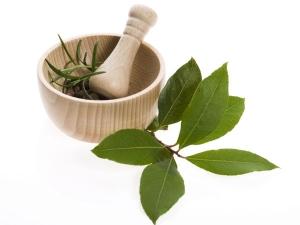 Herbs Dry Hair Treatment