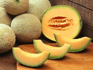 Foods That Will Help You Stay Hydrated The Summer 008222 008239 008239