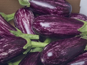 Amazing Health Benefits Eggplant