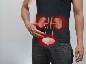 Herbal Remedies Urinary Problems