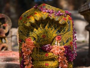 Significance Nag Panchami Puja Vidhi