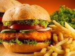 Tasty Cheese Chicken Burger Recipe