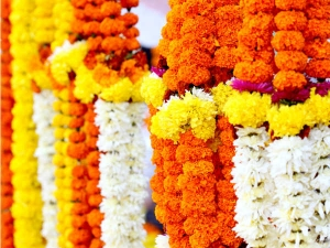 Flowers That Are Important Hindus Its Meaning Telugu