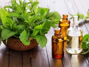 Beauty Benefits Peppermint Oil