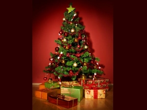 The True Meaning Christmas Trees Importance