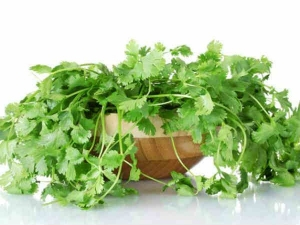 Health Benefits Coriander Leaves Coriander Leaves Reduce Fa