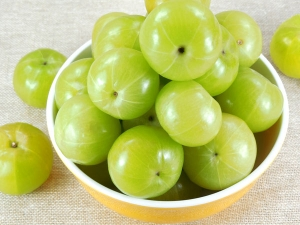 Benefits Consuming Gooseberry During Pregnancy