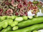 Amazing Health Benefits Fava Beans Seemachintakayalu Hea