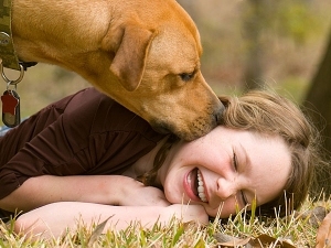 8 Wise Ways Choose The Right Pet