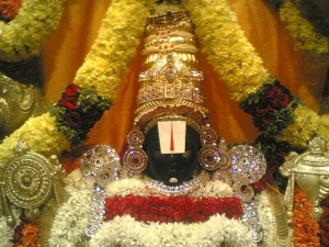 Why Is Green Camphor Applied Lord Venkateswara S Chin Everyd