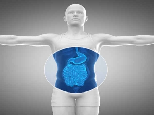 Super Foods That Clean Up Your Intestines
