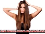 Try These Home Remedies Dry Damaged Hair