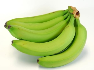 Are Plantains Safe During Pregnancy