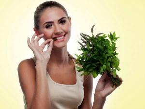 Best Ayurvedic Remedies Women S Reproductive Health