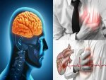 You Must Know The Differences Between Heart Attack Stroke
