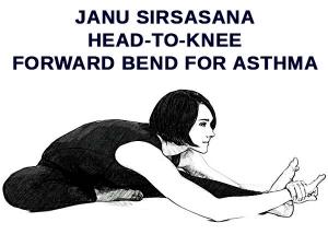 Janu Sirsasana Head To Knee Forward Bend Asthma