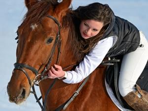 Horse Dream Meaning Interpretations