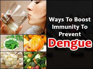 Ways Boost Immunity Prevent Dengue