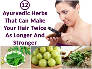 Ayurvedic Herbs That Can Make Your Hair Twice As Longer St