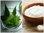 What Happens When You Apply Neem Curd On Your Skin