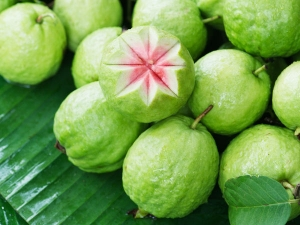 Amazing Reasons You Should Eat Guavas